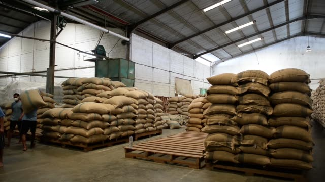 vídeos de stock, filmes e b-roll de workers stack bags of raw coffee beans at taman delta indonesia coffee factory in semarang, indonesia on thursday, march 12, 2015 - raw footage