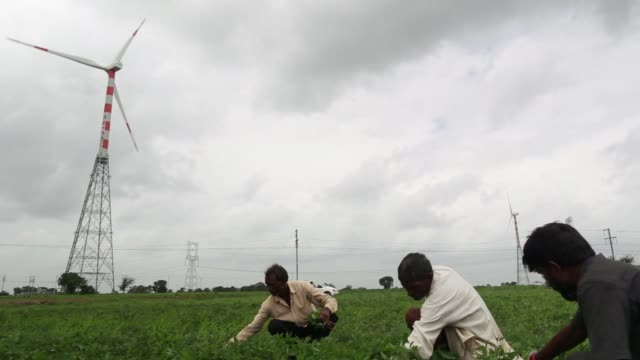 workers tend the land as a wind turbine manufactured by suzlon energy ltd operating beyond electricity pylons at the ostro energy pvt dewas wind... - madhya pradesh stock videos and b-roll footage