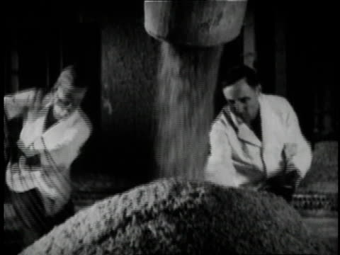 1936 workers turning barley at anheuser busch brewery in st. louis / missouri, united states - anheuser busch inbev stock videos and b-roll footage