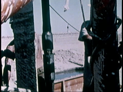 1978 montage workers working on drill / imperial valley, california, united states - インペリアルバレー点の映像素材/bロール