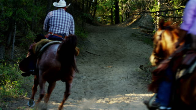 working cowboys and cowgirls riding through forest wilderness - working animal stock videos & royalty-free footage