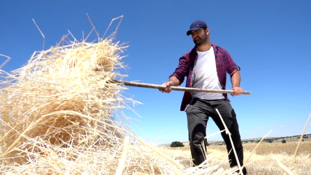 Working Farmer with straw