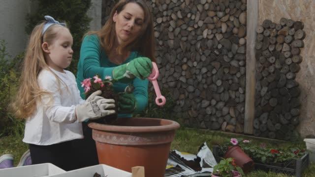 vidéos et rushes de travailler en équipe tout en en potant des fleurs ensemble - gant de jardinage
