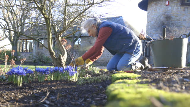 working on the garden - gardening glove stock videos & royalty-free footage