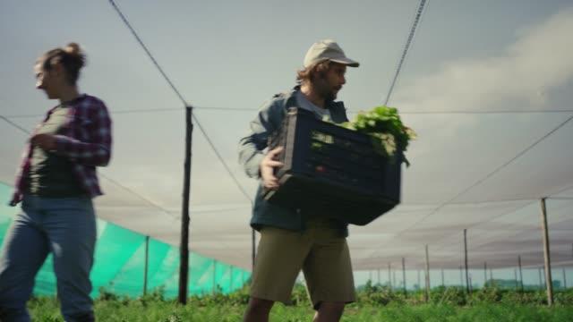vidéos et rushes de travailler la terre a tant de récompenses - produit bio