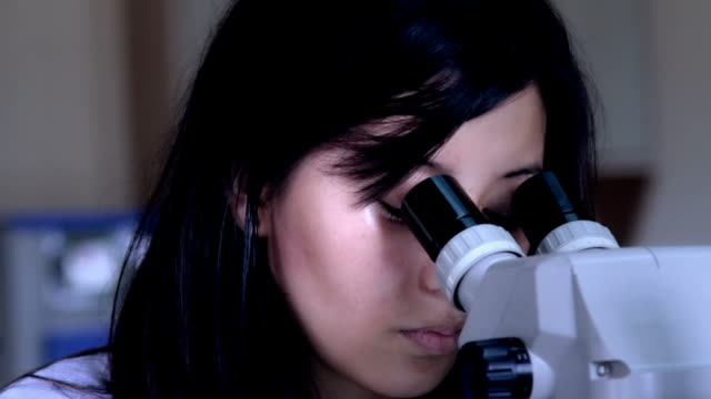 Working with a Microscope