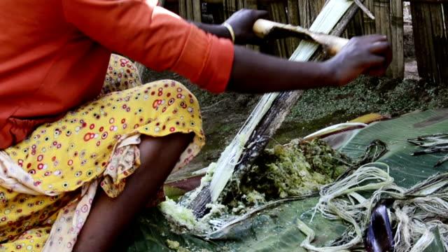 vídeos y material grabado en eventos de stock de mujer de trabajo - etiopía