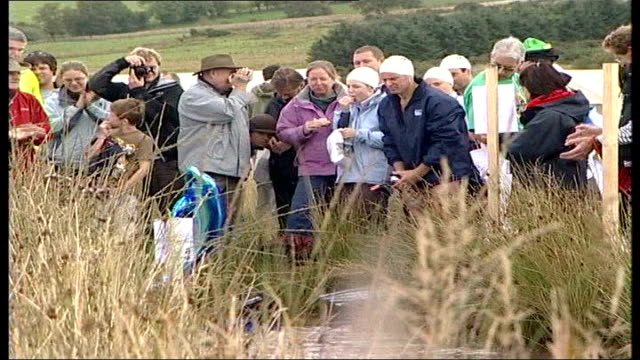 world bog snorkelling championships; wales: ext general views of people takign part in the world bog snorkling championships 2006 including a small... - bog stock videos & royalty-free footage