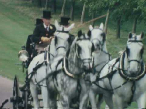 world carriage riding championships: prince philip; england: berkshire: windsor: ext prince philip, duke of edinburgh points bv duke wearing long... - grey colour stock videos & royalty-free footage