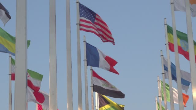world congress, national flags gather - 制裁点の映像素材/bロール