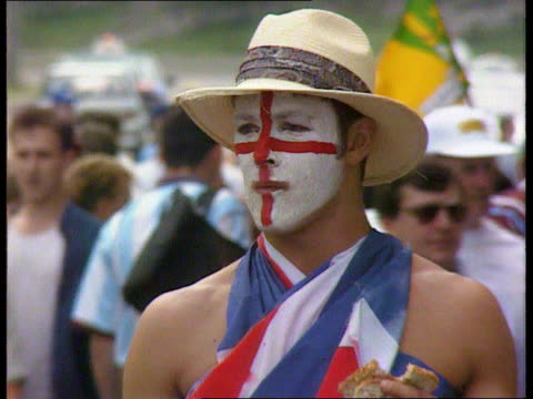 england beat australia australia sydney ms english cricket fans with painted faces tgv crowds of fans cms fan with painted face cms fan with union... - fan enthusiast stock videos & royalty-free footage