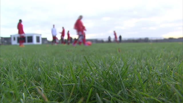 world football's governing body has dismissed as 'nonsense' claims that staging next year's women's world cup on artificial pitches is discriminatory... - bearbeitetes segment stock-videos und b-roll-filmmaterial