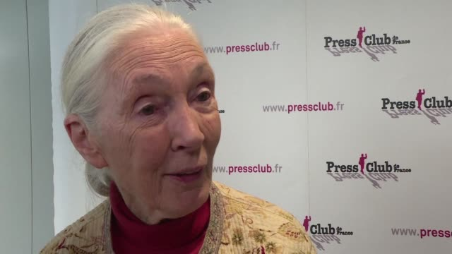 World renowned primatologist and environmental activist Jane Goodall gives a press conference on the subject of a forthcoming documentary about her...