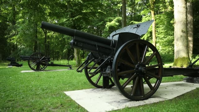 World War Iera cannon stands in a clearing in Belleau Wood where 100 years before US soldiers many of them marines repelled repeated assaults from a...