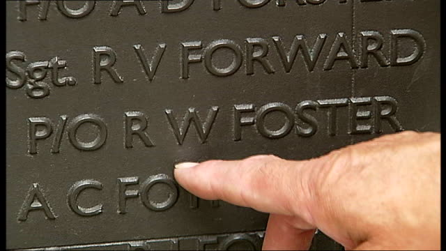 world war ii pilot's name to be added to battle of britain monument london victoria embankment ext reporter to camera close shot of name on monument... - raf stock videos and b-roll footage