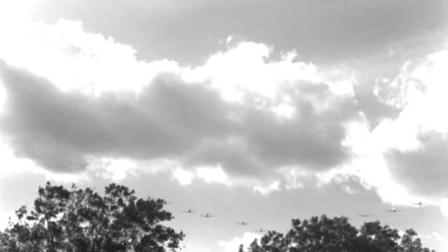 world war ii trainer airplanes fly in formation over treetops. - 1943 stock videos & royalty-free footage