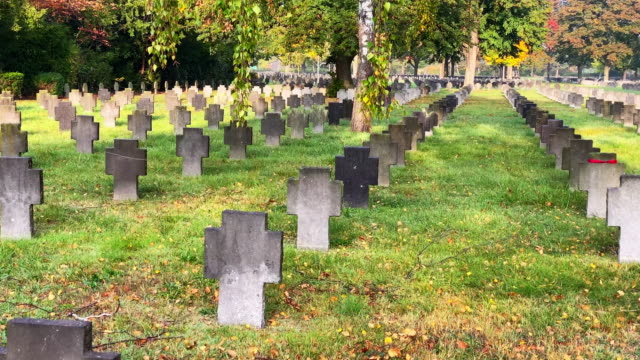 world war ii war graves - gravestone stock videos & royalty-free footage