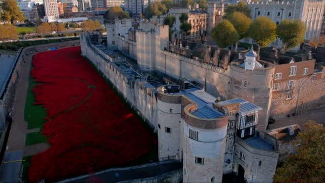 world war one centenary armistice day commemorations england london tower of london ext poppy installation in moat around tower of london as last... - vallgrav bildbanksvideor och videomaterial från bakom kulisserna