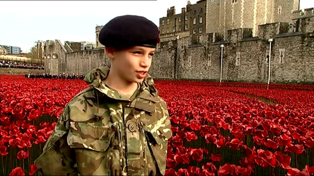 world war one centenary armistice day commemorations young boy harry hayes in cadet uniform harry hayes interview sot people looking at poppy... - poppy stock videos & royalty-free footage
