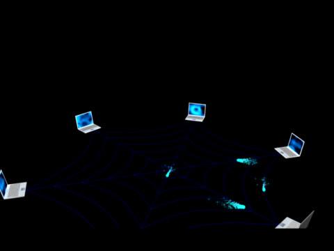 stockvideo's en b-roll-footage met world wide web - vachtpatroon