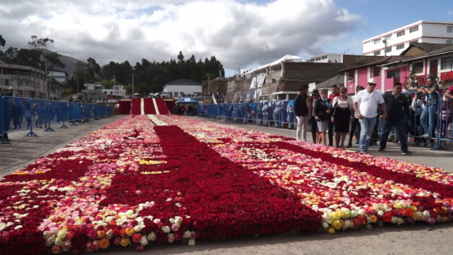 vidéos et rushes de world's biggest floral arrangement - composition florale