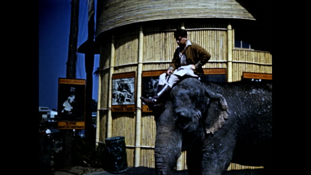 world's fair exterior of artist's village frank buck's jungleland entrance and sign / drummers in african tribal costumes playing congas / man... - exhibition stock videos & royalty-free footage