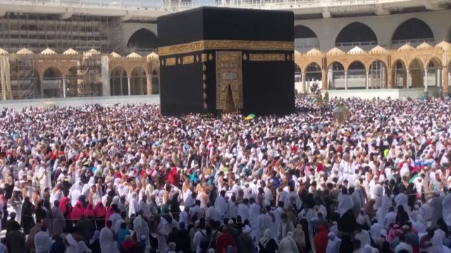 worshippers pray in mecca as saudi arabia suspends visas for visits to islam's holiest sites for the umrah pilgrimage an unprecedented move triggered... - pilgrim stock videos & royalty-free footage