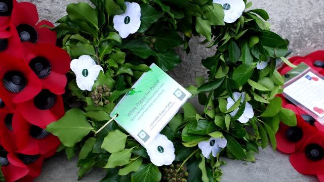 wreaths laid by lambeth council, the metropolitan police and the green party at stockwell war memorial on armastice day on november 11, 2020 in... - wreath stock videos & royalty-free footage