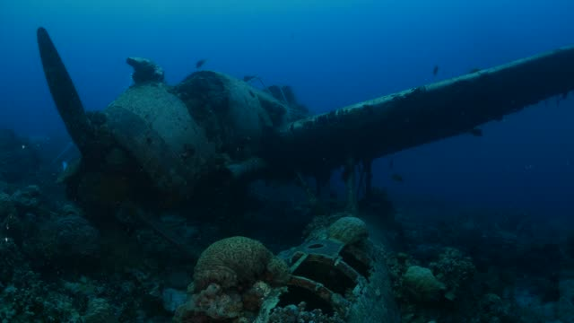 wreck of japanese navy seaplane - airplane crash stock videos and b-roll footage