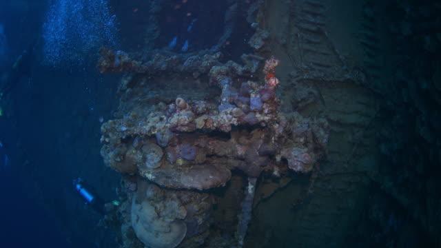 wreck sea of umbria, red sea, sudan. - 1940 stock videos & royalty-free footage