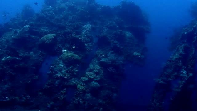 vídeos de stock e filmes b-roll de destroços - mar de andamão
