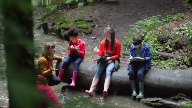 writing down their findings - field trip stock videos & royalty-free footage