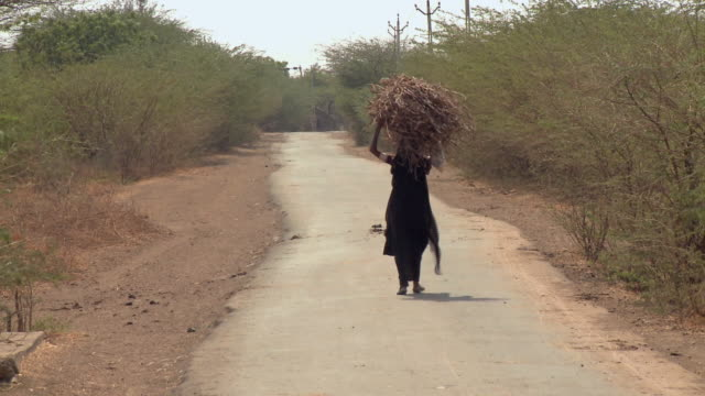 Ws Old woman with brushwood carrying over head and walking on street / Rajkot, India