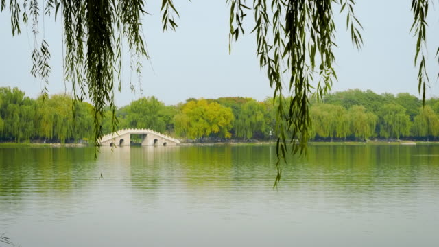 wsêlake in old summer palace, beijing, china - summer palace beijing stock videos & royalty-free footage