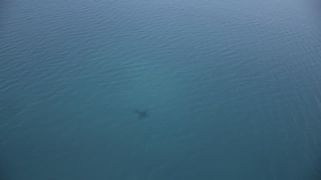 wss shadow of a plane over calm blue ocean - seascape stock videos & royalty-free footage