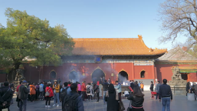 wsêyongheêtemple, beijing, china - {{ contactusnotification.cta }} stock videos & royalty-free footage