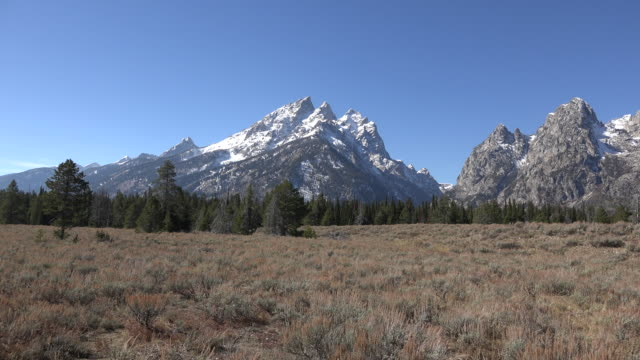 wyoming cascade canyon in the tetons - teton range stock videos & royalty-free footage