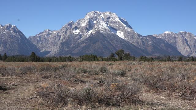 wyoming good view of mount moran - モラン山点の映像素材/bロール