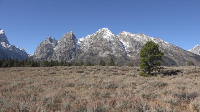 wyoming teton peaks and cascade canyon - teton range stock videos & royalty-free footage