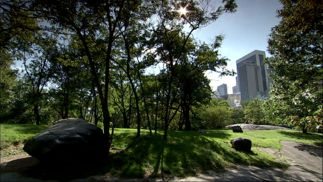 2 x long shots of boulders alongside path in central park - daytime. central park - new york. available in hd. - boulder rock stock videos & royalty-free footage