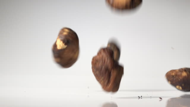 xianggu mushroom dehydrated food in mid air captured with high speed with white background - sammlung stock-videos und b-roll-filmmaterial