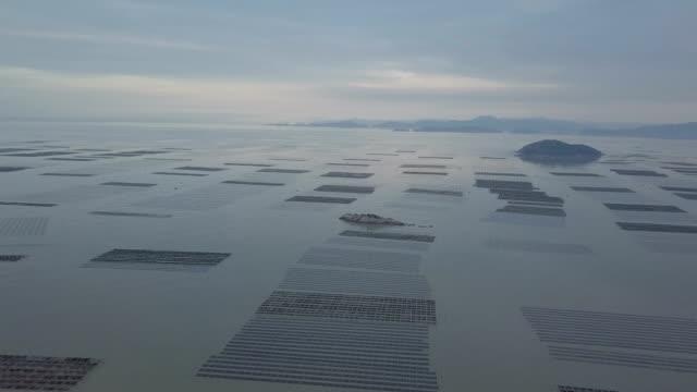 xiapu strandlandschaft in der dämmerung - fischereinetz stock-videos und b-roll-filmmaterial
