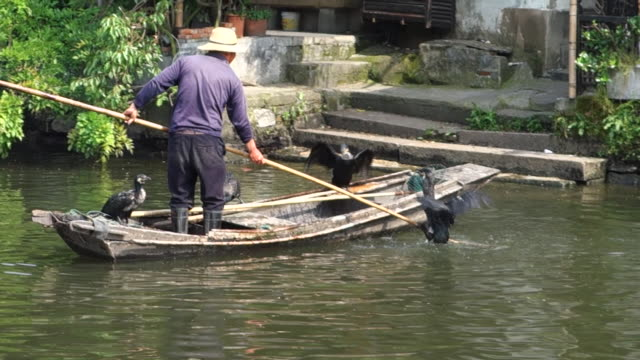 Xitang is an ancient scenic town along the great canal With its well preserved waterside architectures and folk lifestyles from Ming and Qing dynasty...