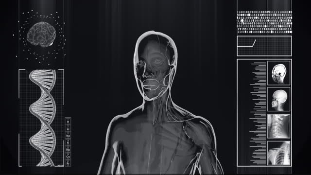 vídeos de stock e filmes b-roll de 4k  x-ray of human half muscles and half skin | stock video - tronco cerebral