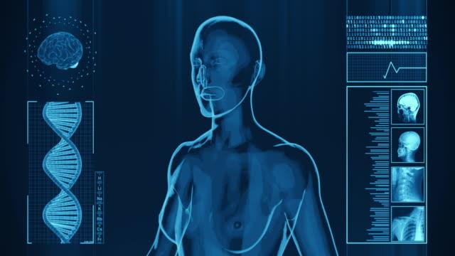 4k  x-ray of human woman | stock video - human skeleton stock videos & royalty-free footage