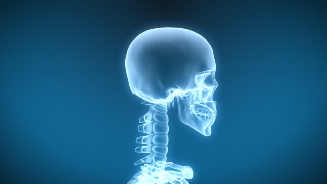 x-ray skeleton drinking fluid - human skeleton stock videos & royalty-free footage
