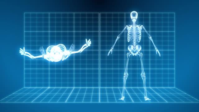vidéos et rushes de x-ray squelette tournant - squelette