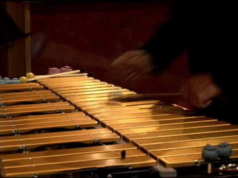 xylophone musician - mallet hand tool stock videos and b-roll footage