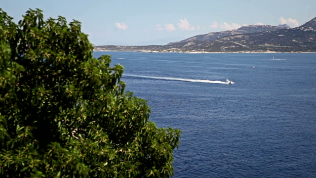 yacht arriving in the gulf of calvi, corsica - calvi stock videos & royalty-free footage