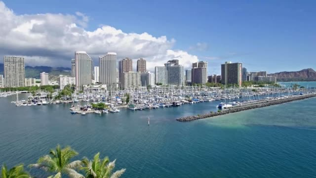 yacht harbor honolulu - hawaii islands stock videos and b-roll footage